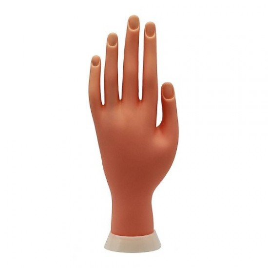 Hand for modeling, 58740, Nails,  Health and beauty. All for beauty salons,All for a manicure ,Nails, buy with worldwide shipping